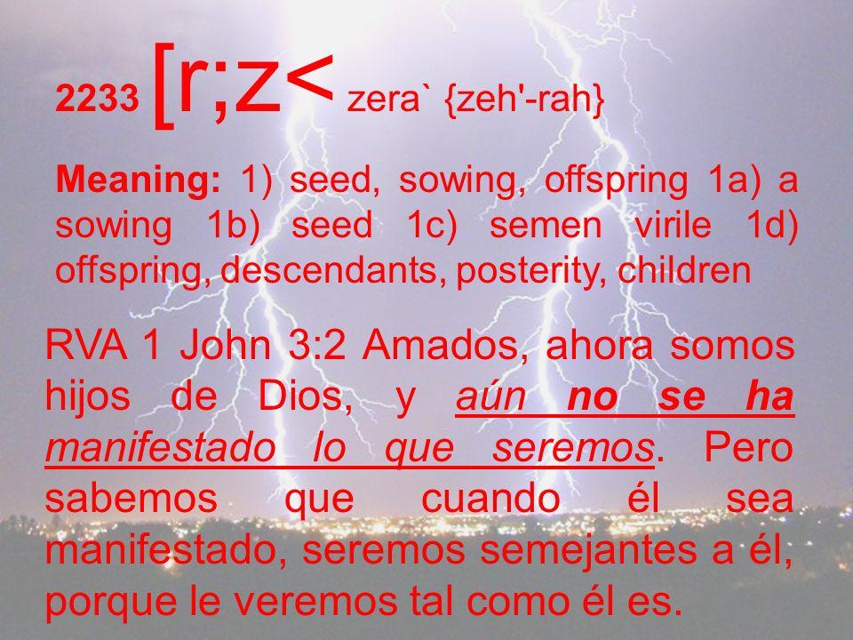 2233 [r;z< zera` {zeh -rah}